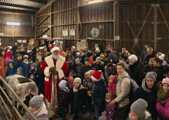 Im Schafstall geht's weihnachtlich zu